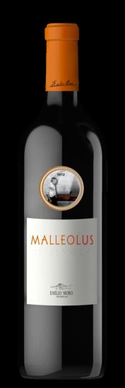 Malleolus 2018
